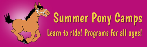 summer riding camps